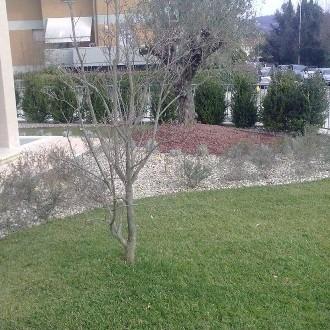 Le nostre realizzazioni progettazione e manutenzione for Progettazione giardini siena
