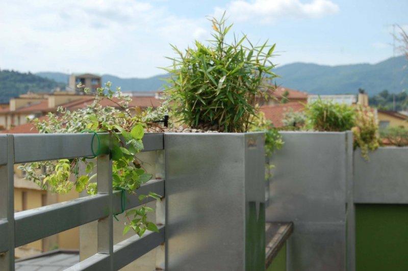 Verde pensile progettazione e manutenzione giardini for Progettazione giardini siena