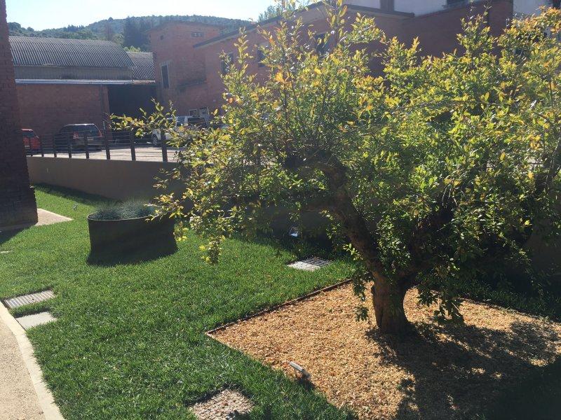 Realizzazione giardino aziendale biochemical system for Progettazione giardini siena