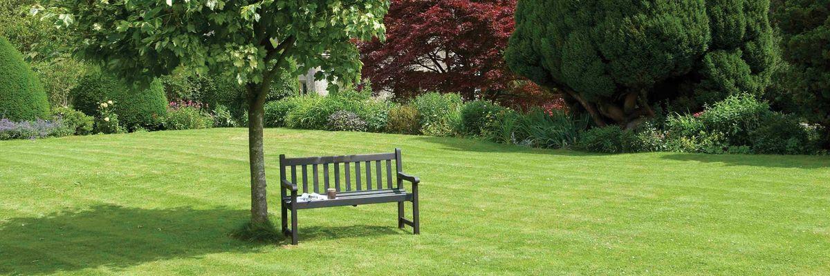 Realizzazione progettazione giardini aree verdi for Progettazione giardini siena