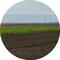 Lavorazioni agricole